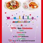 waffle (24)