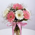ısparta dünya çiçekci (9)