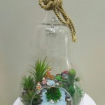ısparta çiçekci (8)