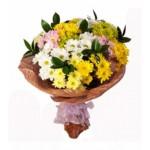 ısparta dünya çiçekci (3)